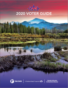 2020 CARE Voter Guide